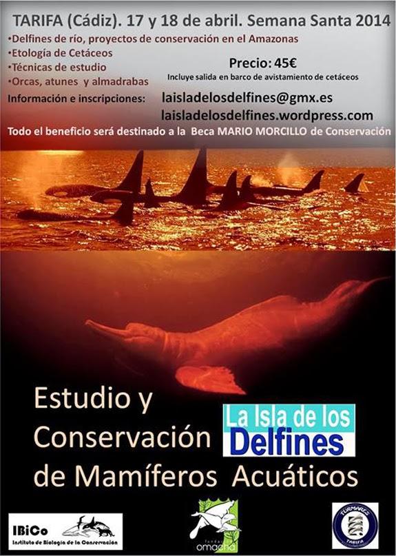 La mar salao curso isla de los delfines