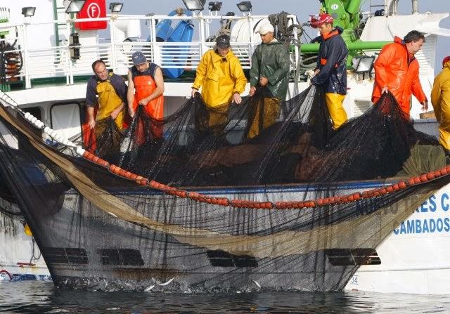 La mar salao pesca de la sardina