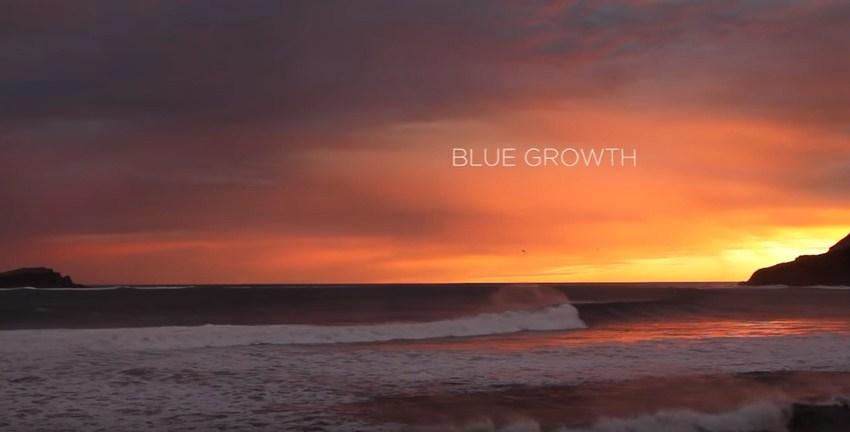 La Mar Salao Bluegrowth