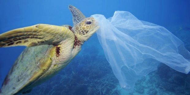 La Mar Salao Mar Plástico