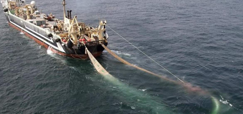 la mar salao app pesca arrastre