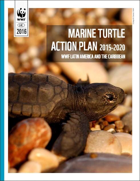 la mar salao plan accion conservacion tortuga marina