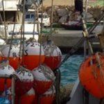 La Mar Salao cuota Pez Espada Mediterraneo