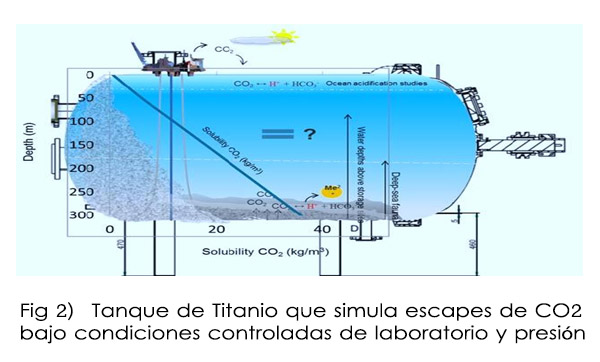 La Mar Salao Ana Borrero tesis