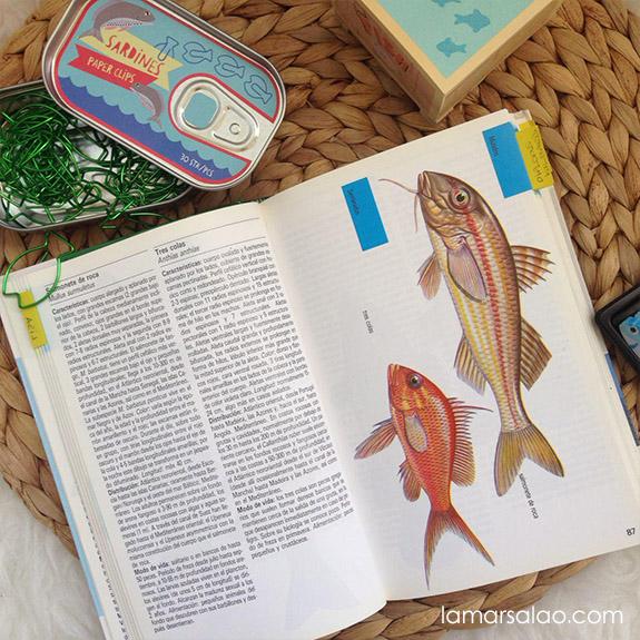 La Mar Salao libro peces de mar